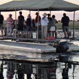 Stella Odonnell 05 Sunset Cruise-Chobe river-2
